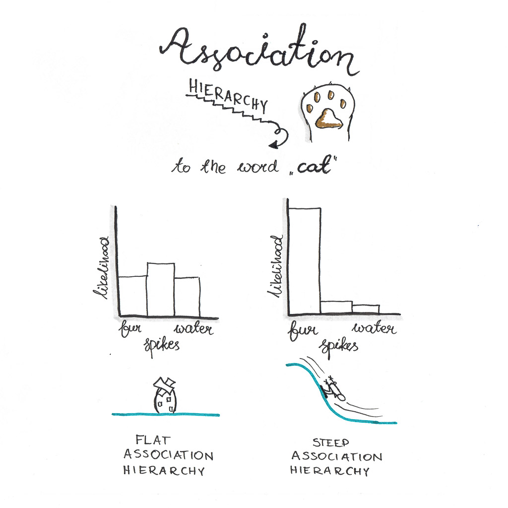 Flat and steep association hierarchies. Associations to the word cat.